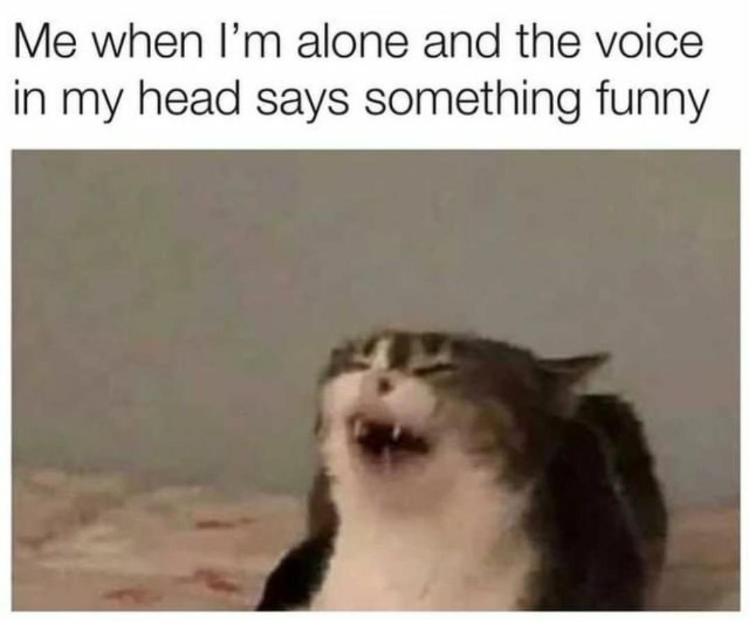 Aaee yo - meme