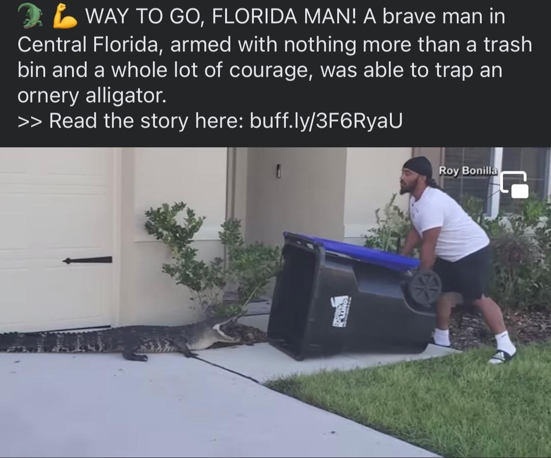 a Florida man protects his territory! - meme
