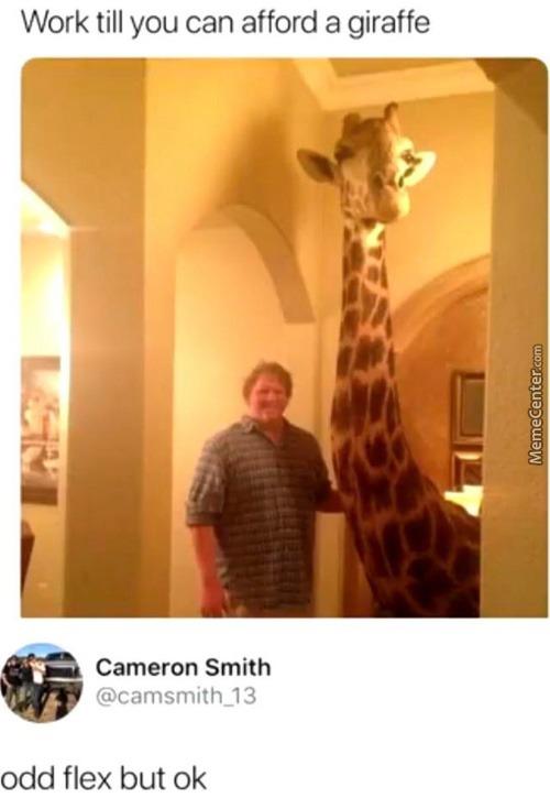 Tall friend - meme