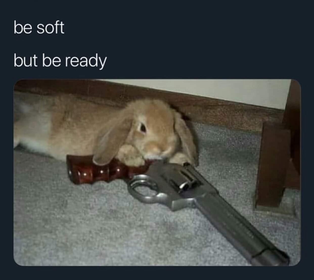 BUNNY GUN! - meme