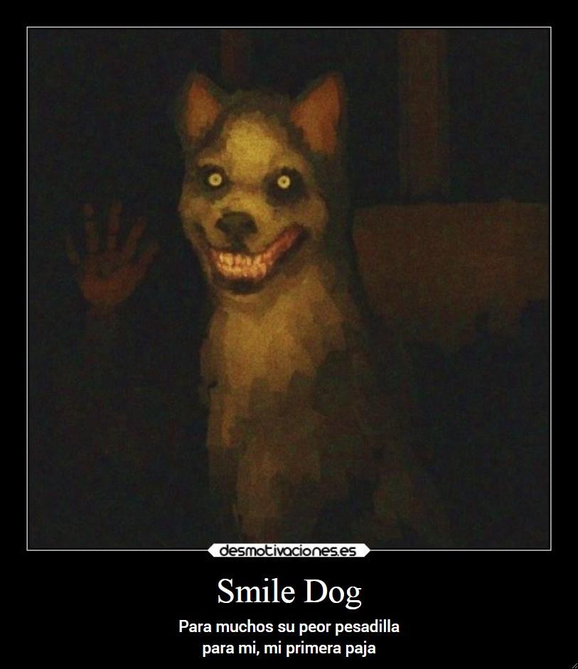 Smile Dog  - meme