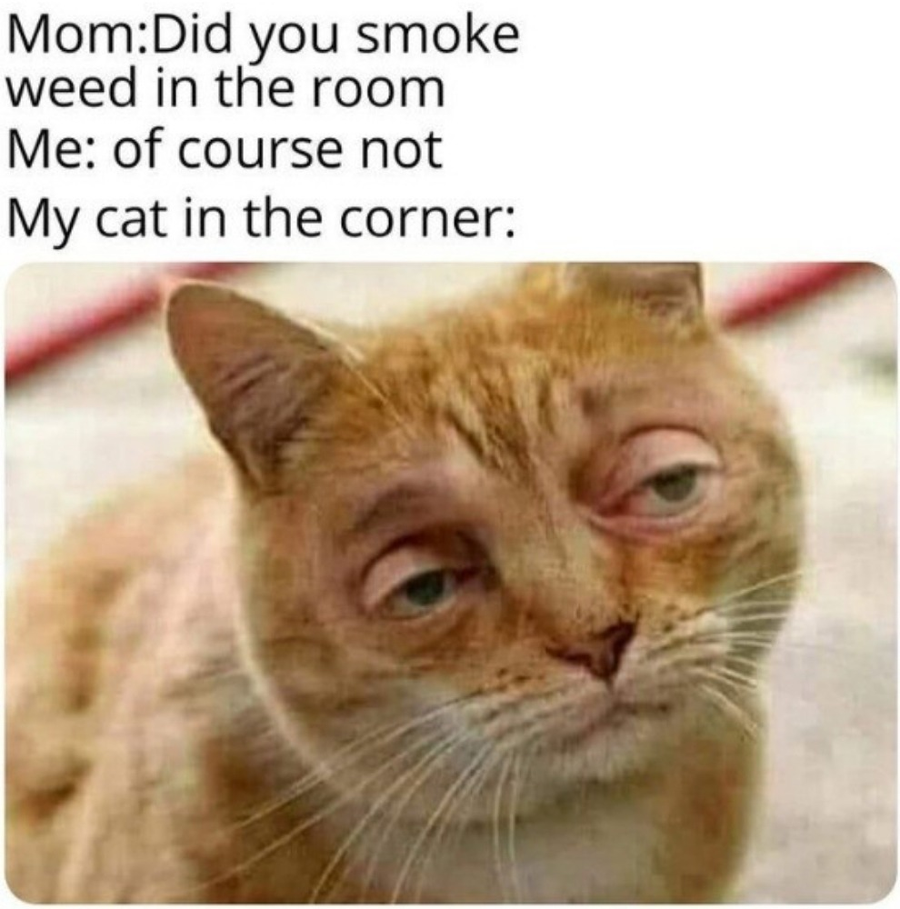 He's higher than a motherfucker! - meme
