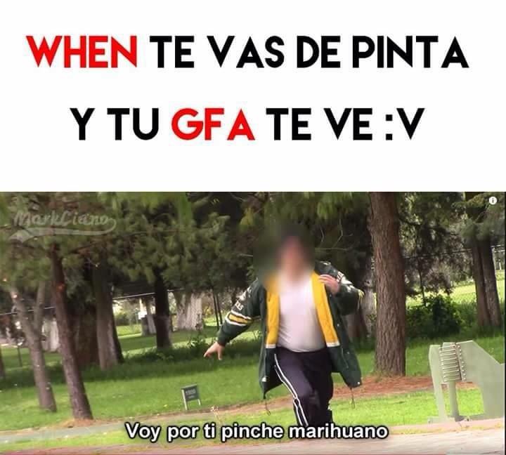gfa - meme