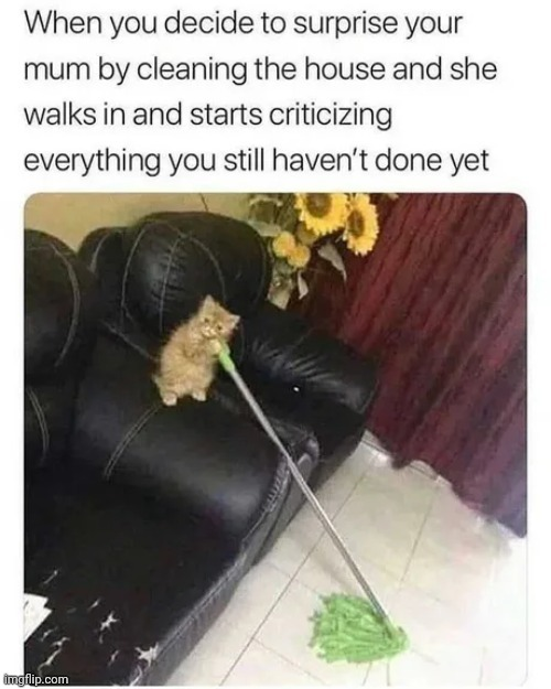 Emotional scar - meme