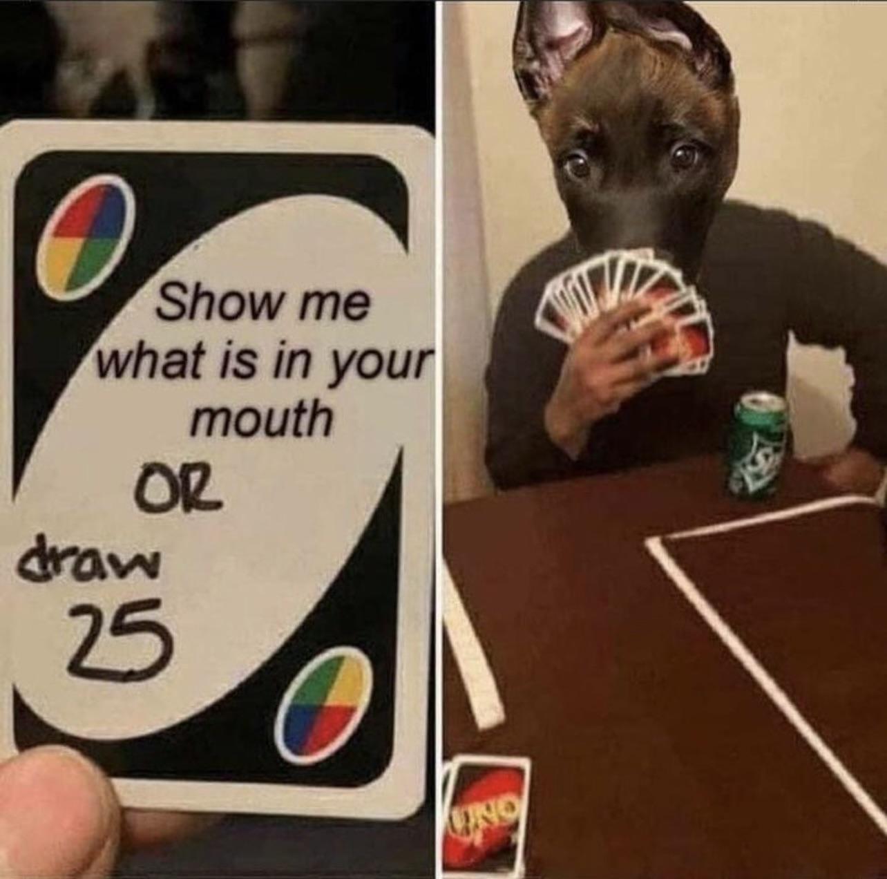 doggo won't show u - meme