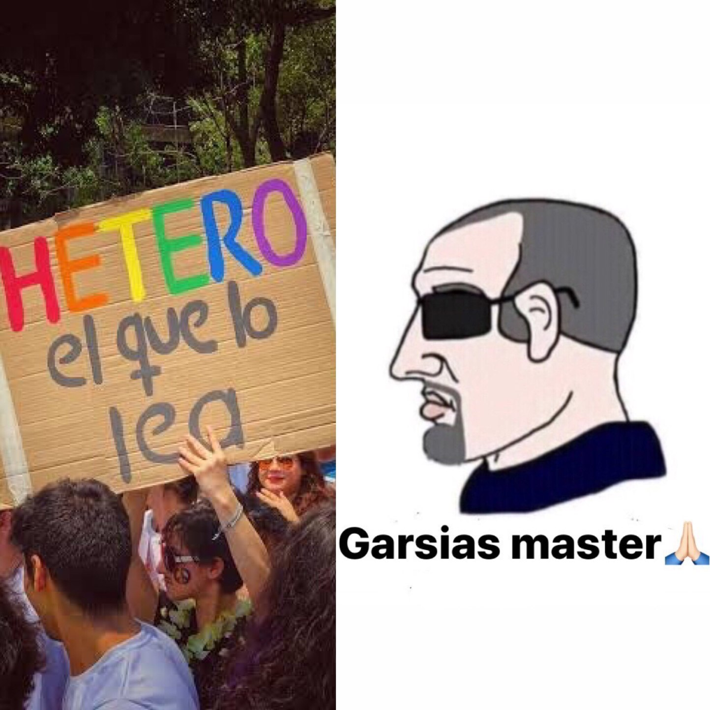 orgulloso de ser normal - meme