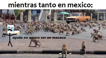 un extranjero en mexico: (el meme es original pero la idea esta un poco usada)