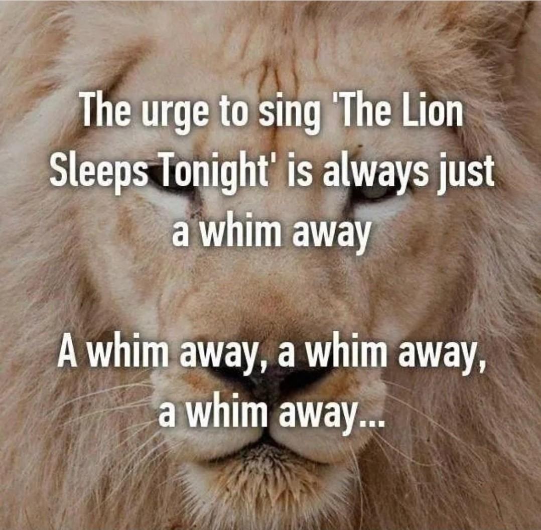 A whim away... - meme