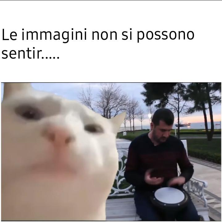 arippa pa arippa pe yado yado - meme
