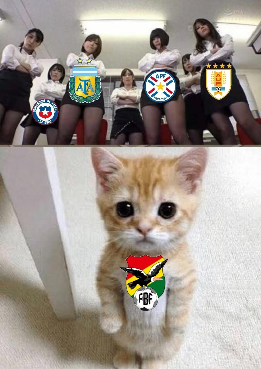 Resumen del final del Grupo A de la Copa América 2021 - meme