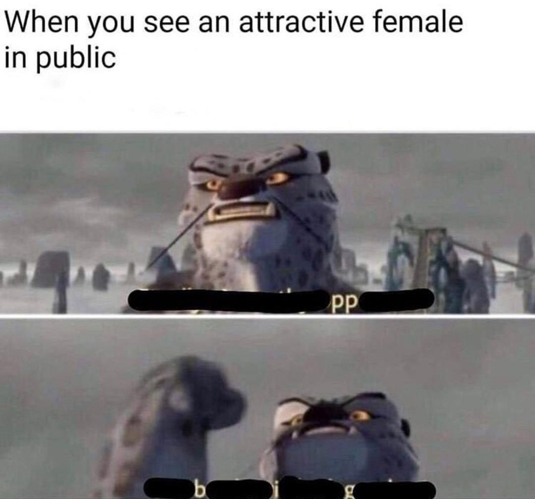 PP - meme