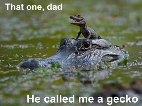 574e909e905c8 gecko meme by saro001 ) memedroid