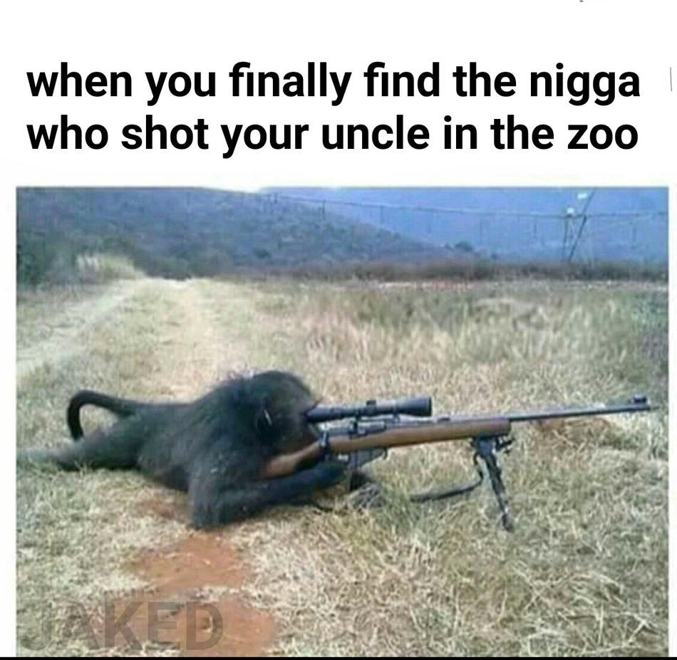 rip that monkey - meme