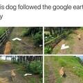 I will follow human
