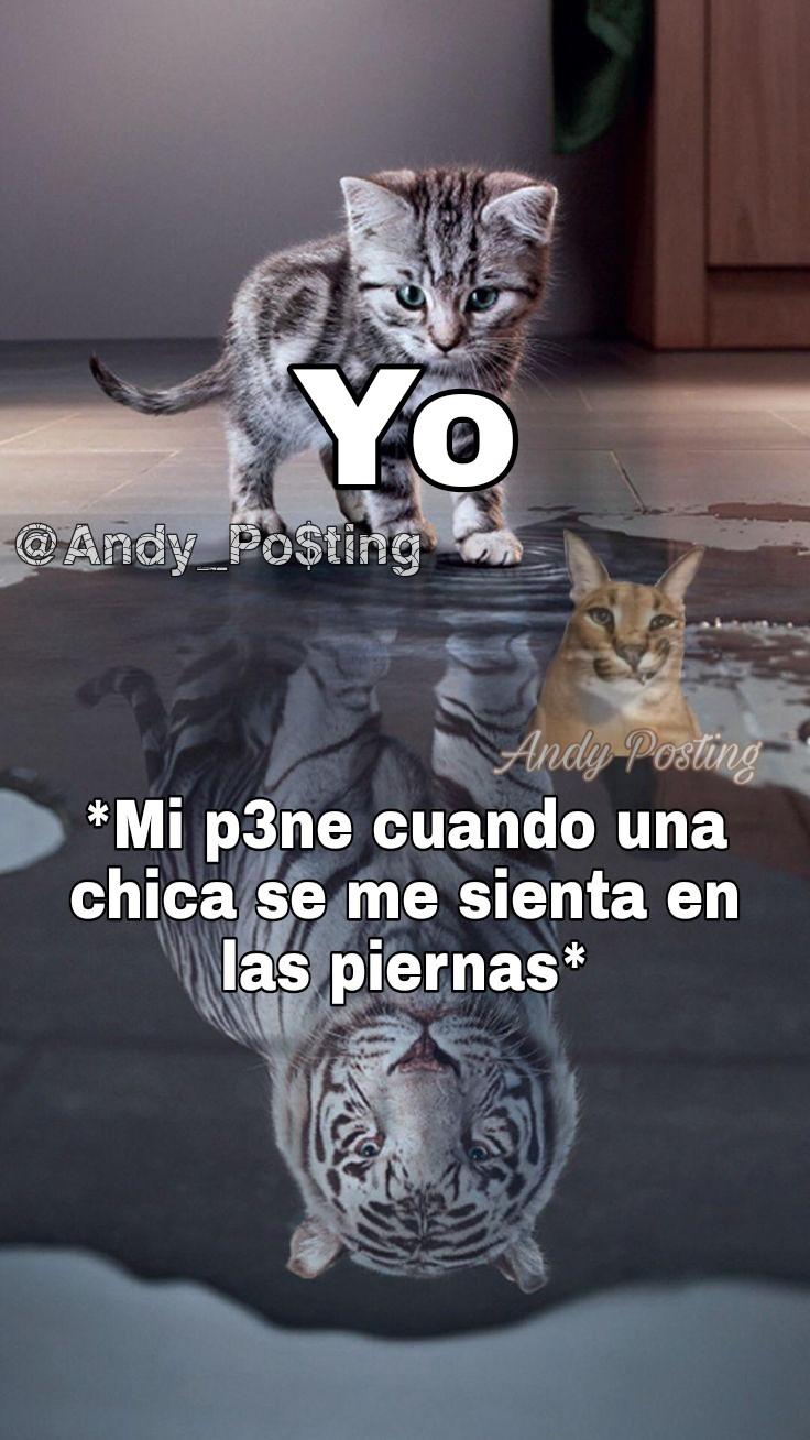 Facebook: Andyy Posting - meme