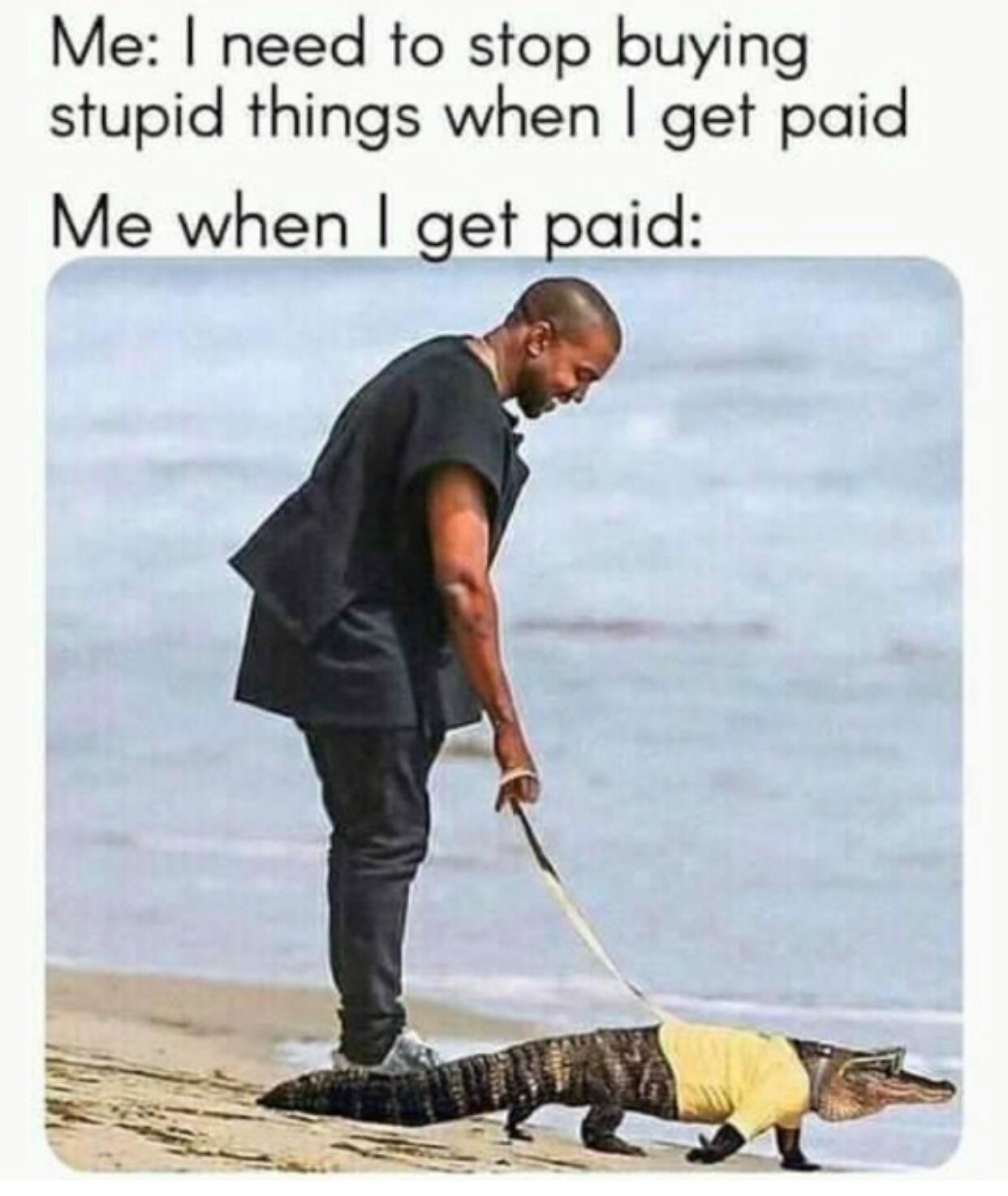 Gotta get that alligator. - meme