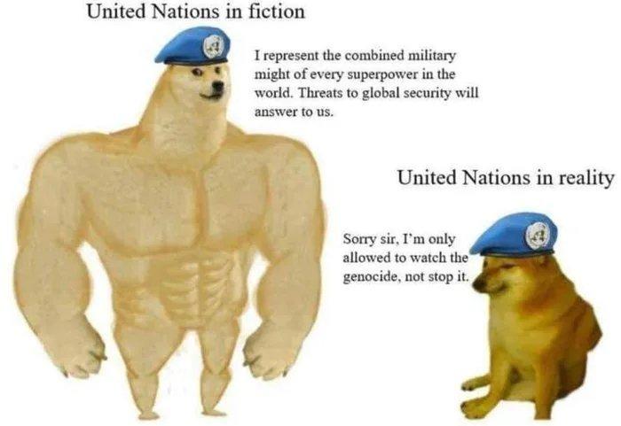 United Nations - meme