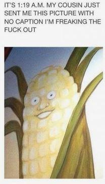 corn - meme