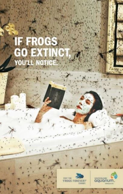 Save the frogs! - meme