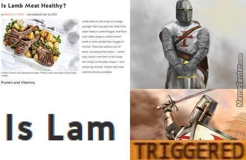 Plz dont be triggered - meme