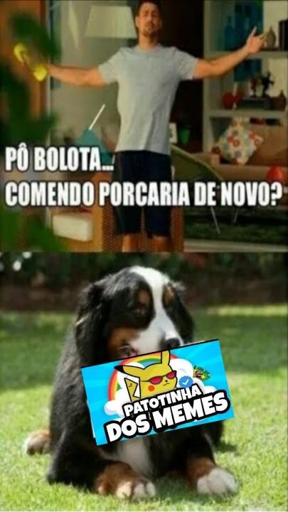 Bolota vacilão - meme