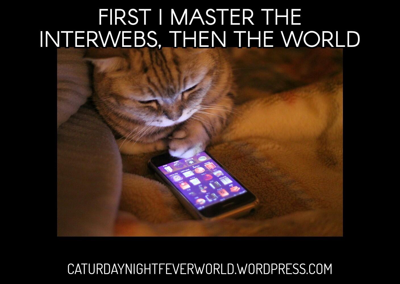 I must master the interwebs - meme