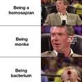 return to bacterium