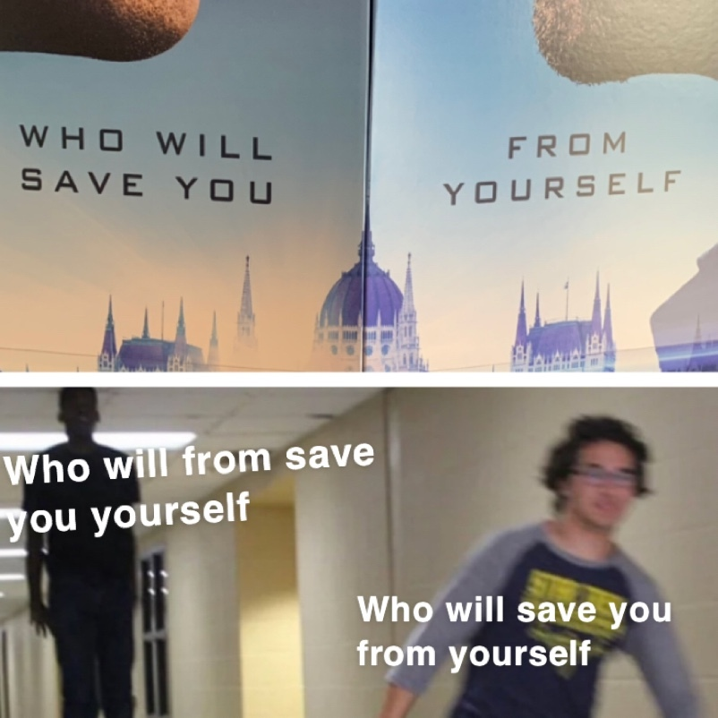 who will save you from yourself - meme