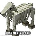 Juan venezolano