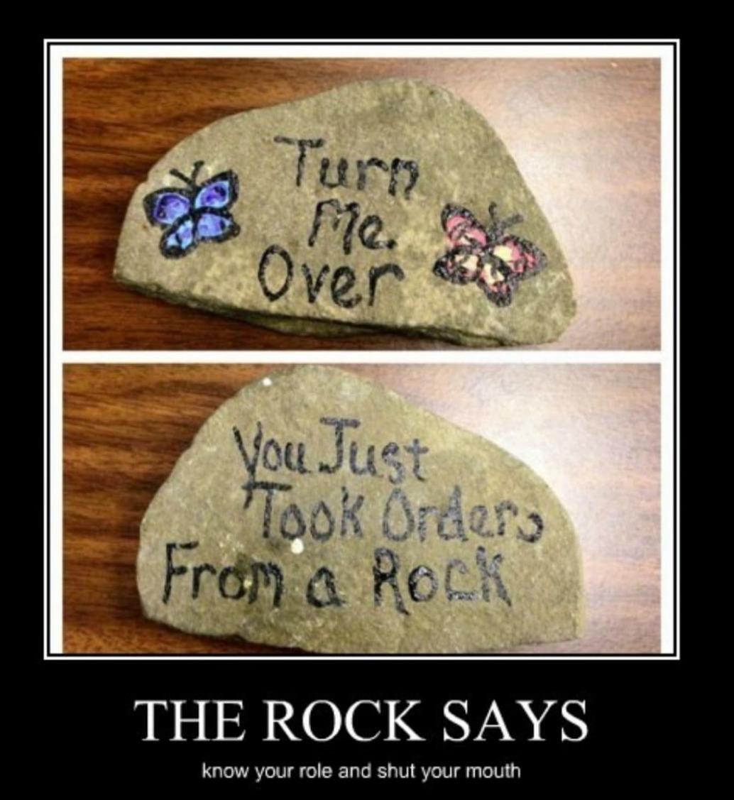 The rock - meme