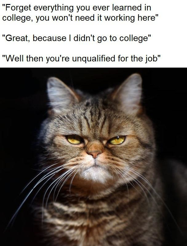 Forget everytihng you ever learned in college - meme