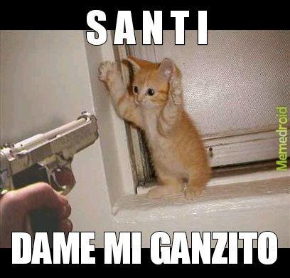 PINSHI SANTI DEVUELVEME MI GANZITO - meme