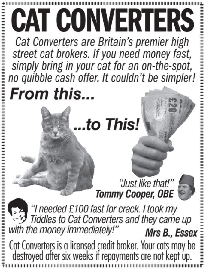 Cat Converters - meme