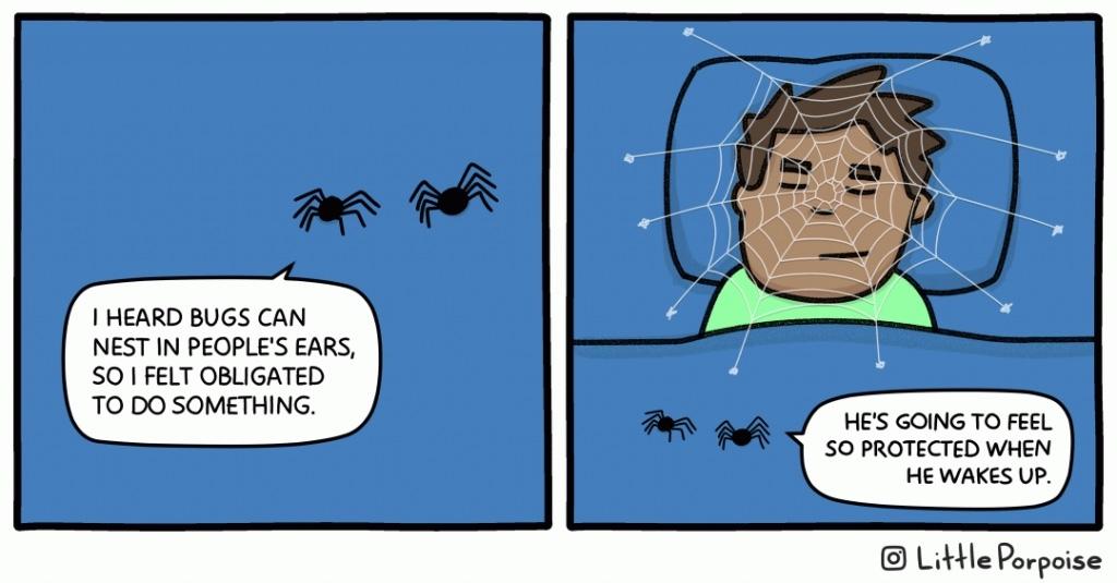 spider bro - meme