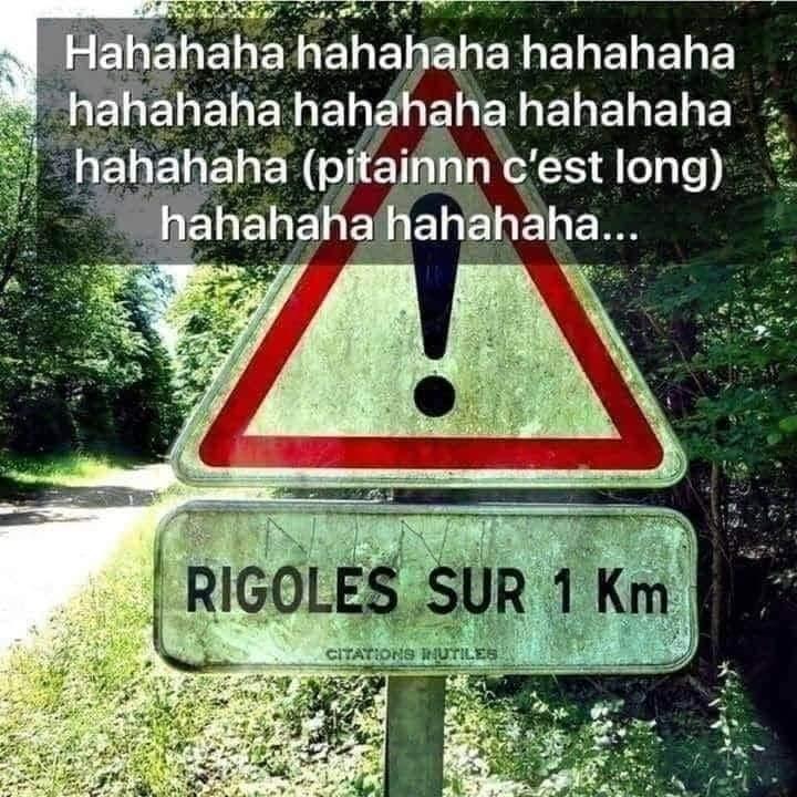 Hahaha... Ha... - meme