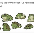 chonky frog