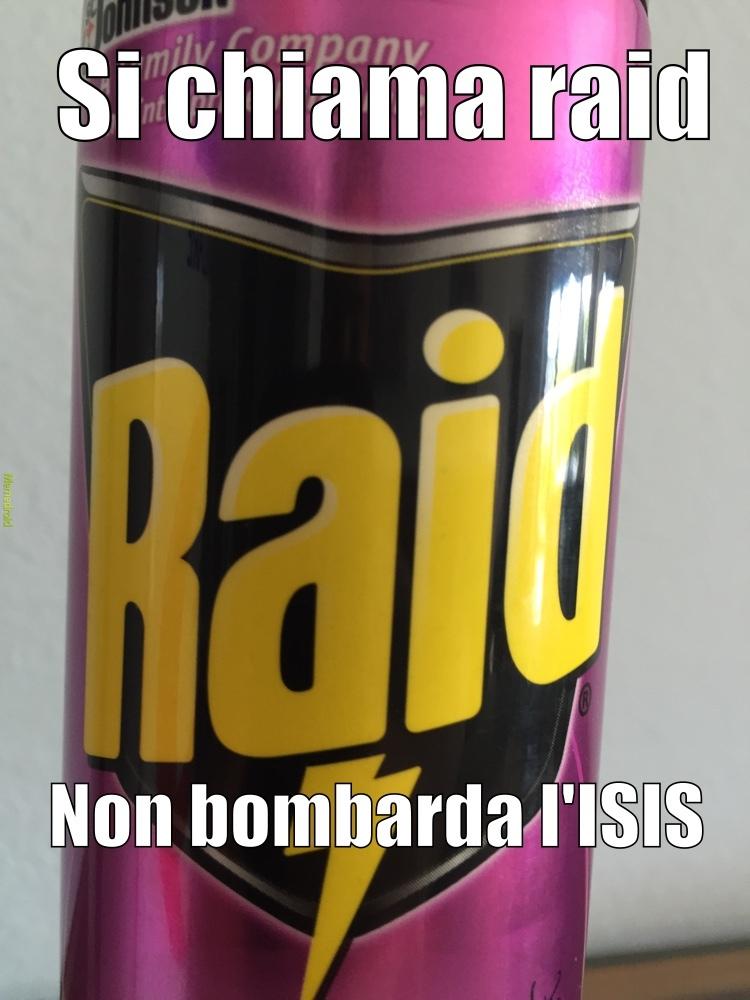 raid - meme