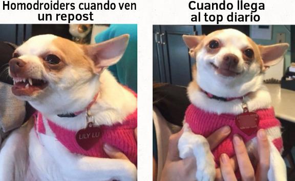 Is. - meme