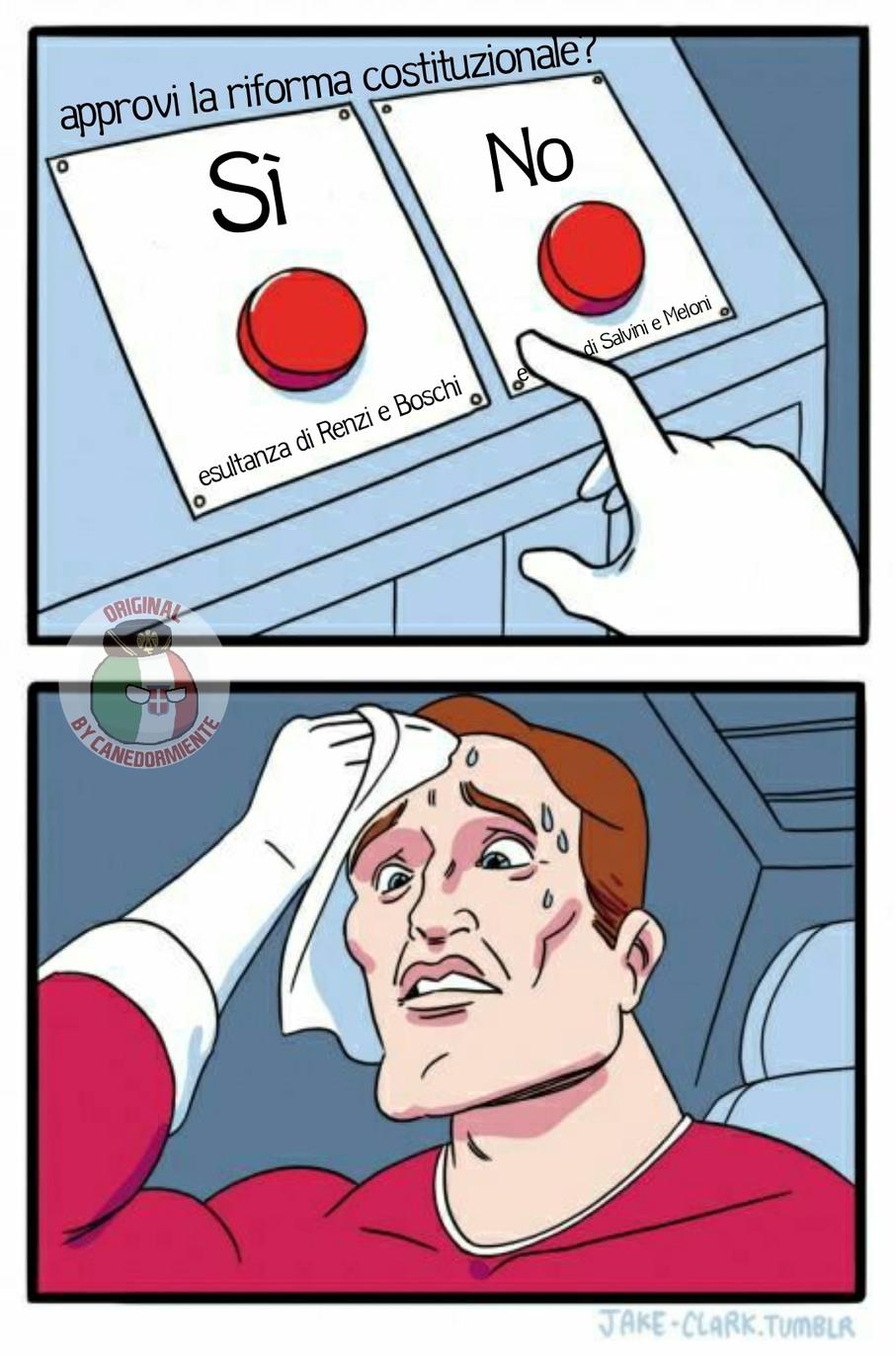 Il triste dilemma di ogni italiano ragionevole al referendum - meme