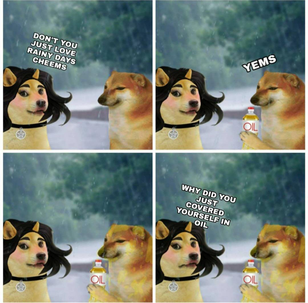 Idk cheems kinda rad - meme