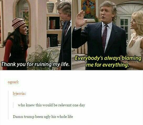 Everyone loves a good Trumping - meme