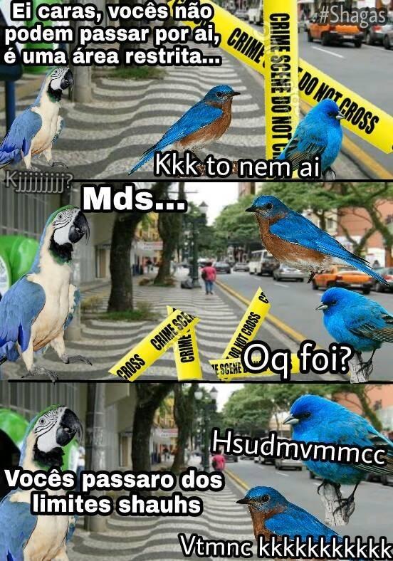 HSUSHSUSH - meme