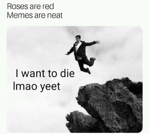 yeet 4 lyf - meme