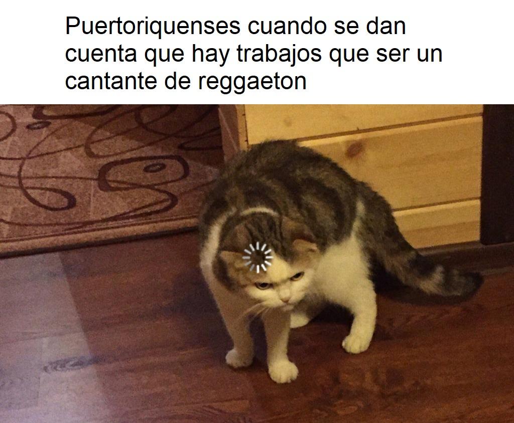 Es puertoriqueños no puertoriquenses, perdon - meme