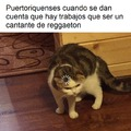 Es puertoriqueños no puertoriquenses, perdon