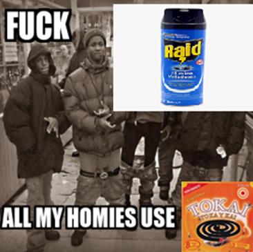 fuck raid - meme