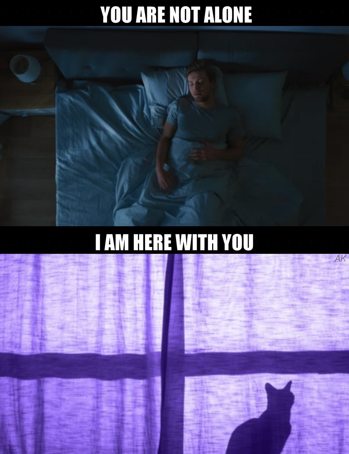 You are not alone miaw - meme