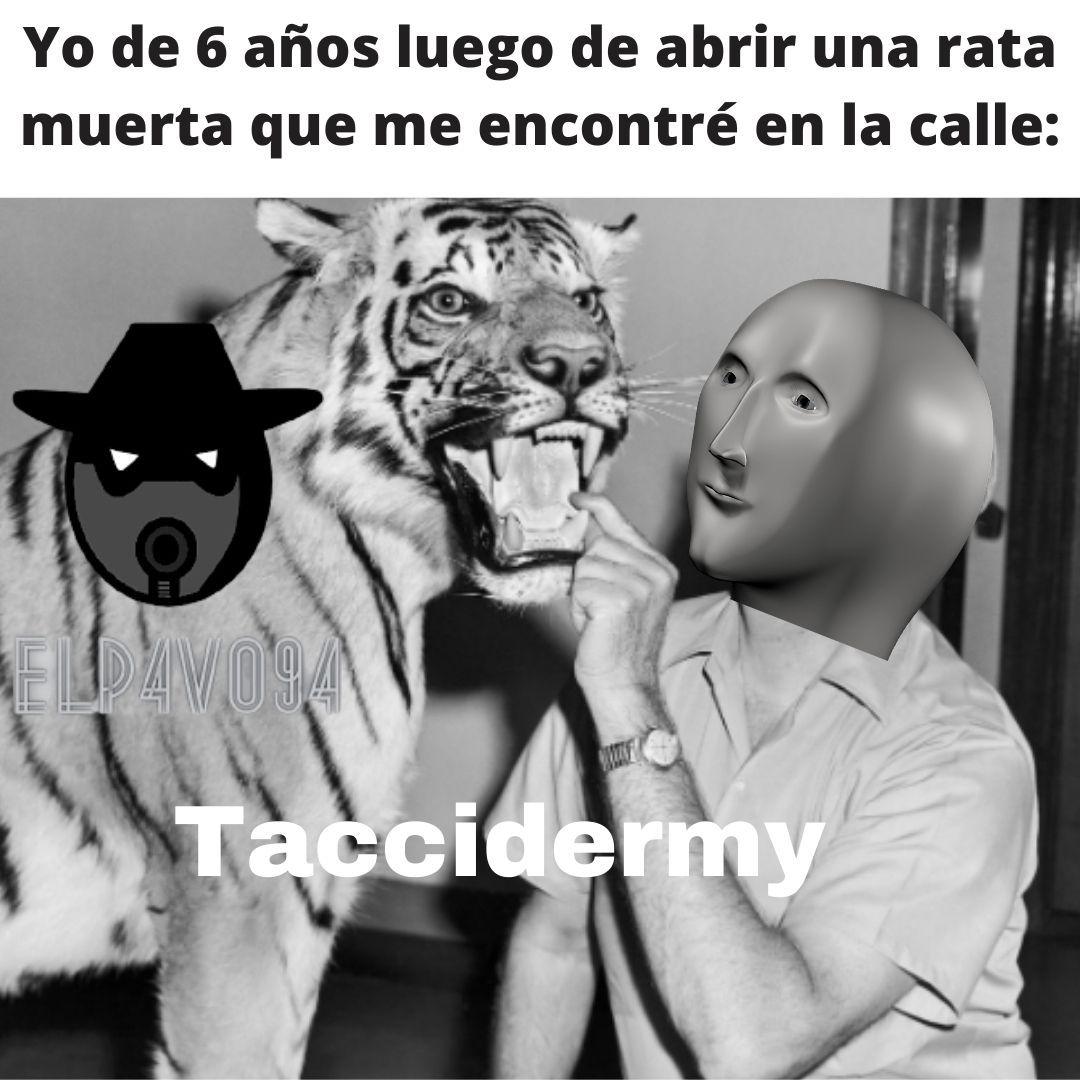 Taxidermia:se define como el oficio de disecar animales para conservarlos con apariencia de vivos y facilitar así su exposición, estudio y conservación. - meme