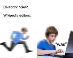 Wikipedia in a nutshell - meme