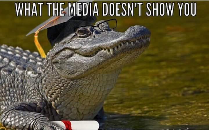 Alligators lives matter! - meme